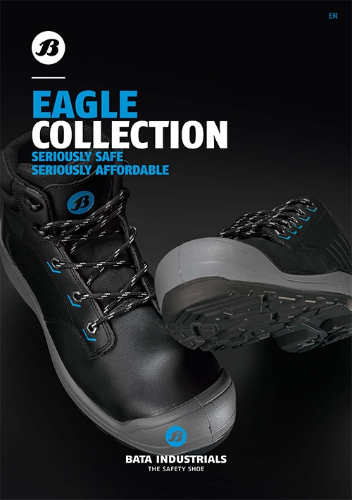 Eagle brochure cover
